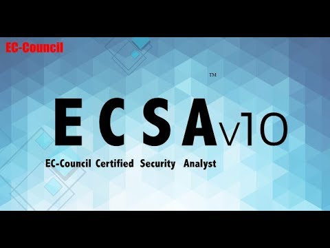 ECSA image